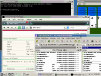 ReactOS-2013-02-08-09-55-11.png