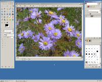 GIMP5.png