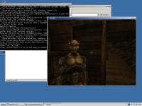 VirtualBox_ReactOS_15_05_2016_16_42_28.png
