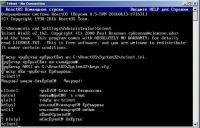 telnet_cp866_default.JPG
