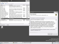 Reaper_Nullsoft install system_font bug with Lautus theme and Theme service disabled_ReactOS_0.4.4_RC1.png