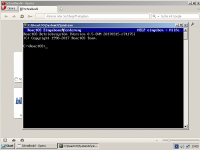 r74175-OperaMaximized-WeDontWantThatBorder.png
