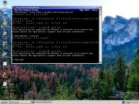ReactOS 0.4.6-git-2.10.0-error.png