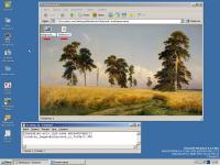 VirtualBox_ReactOS3_07_04_2019_12_53_20.png