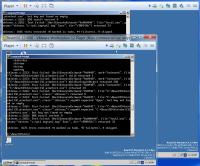 ROS_Shell32_shlexec.png