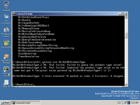 ntdll-RtlGetNtProductType-Server.png