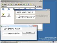 StretchDIBits_ROSvsWindows.jpg