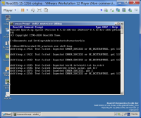 debugprint_crash02.png